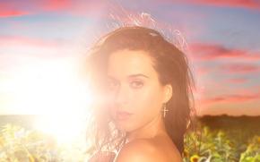 Картинка поле, солнце, подсолнухи, Katy Perry