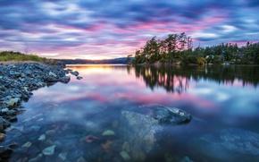 Картинка лес, прозрачность, закат, озеро, спокойствие