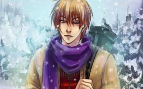 Картинка зима, арт, парень, koyasu