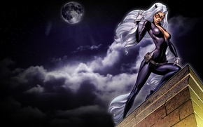 Картинка взгляд, белые волосы, небо, арт, женщина кошка, крыша, луна, ночь, catwoman, маска, костюм