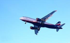 Обои Airbus, самолёт, Аэрофлот, полёт, A320