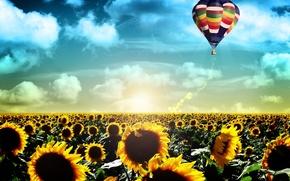 Обои восход, жизнь, полет, поле, воздушный шар, рассвет, подсолнухи, пейзаж