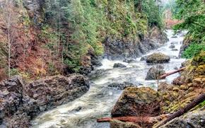 Обои деревья, бревна, река, пороги, скалы