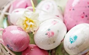 Картинка белый, цветок, праздник, яйца, весна, зеленые, Пасха, розовые, роспись, Easter, пасхальные
