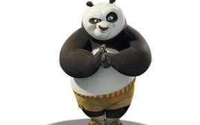 Обои Белый фон, Кунг-Фу, Панда