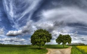 Обои выбор, дорога, деревья, тропинка, развилка, сенокос, поле, красиво, небо, трава