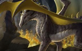Картинка камни, огонь, дракон, крылья, арт