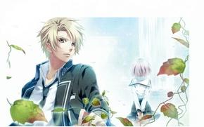 Картинка студент, белый фон, art, блондин, visual novel, teita, norn9, kakeru yuiga