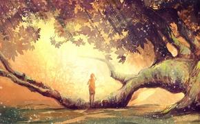 Обои листья, девушка, дерево, ветви, мох, солнечный свет