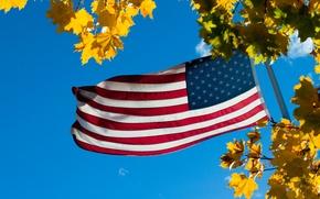 Картинка небо, листья, флаг