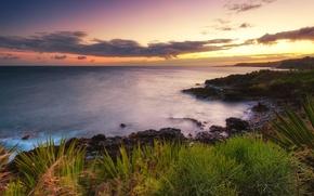 Картинка закат, природа, океан, побережье, Гавайи, Hawaii