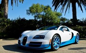 Обои bugatti, veyron, vitesse, бугатти, вейрон, белый