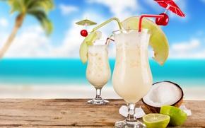 Обои небо, пальма, кокос, бокалы, коктейль, лайм, summer, ломтики, food, трубочки, fruits, шпажки, cocktails