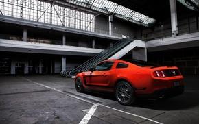 Картинка Mustang, Ford, Muscle, Boss 302, Orange, Car, Shooting, Photo, Rear