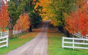 Картинка дорога, осень, лес, забор, Природа