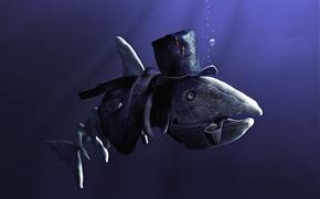 Обои юмор, детские, рыба
