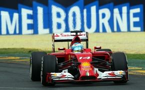 Картинка Феррари, Formula 1, Fernando Alonso, Алонсо, F14T