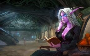 Обои корзина, эльф, арт, книга, уши, помещение, wow, world of warcraft, night elf, сидя, yao ren