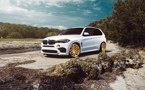 Картинка BMW, Car, Front, White, SUV, X5M, VELOS