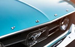 Картинка Mustang, Ford, фара, 1967, Fastback, круглая