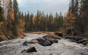 Картинка осень, вода, камни
