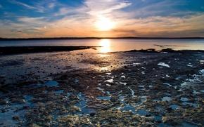 Обои вода, берег, Солнце