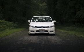 Обои дорога, лес, стекло, отражение, фары, зеркало, Honda, спереди, Civic