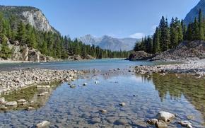 Картинка лес, горы, камни, долина, Канада, Альберта, Banff National Park, Alberta, Canada, Банф, река Боу, Bow …
