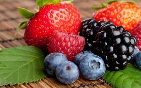 Обои ягоды, малина, черника, клубника, ежевика