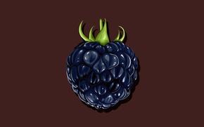 Картинка фон, ягода, ежевика, минимум