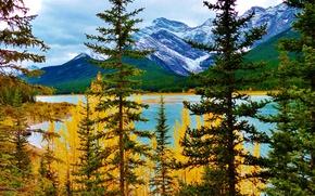 Картинка осень, деревья, горы, озеро, Альберта, Канадав