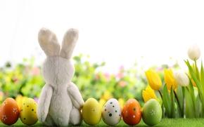 Картинка цветы, eggs, spring, Happy, flowers, кролик, tulips, тюльпаны, Пасха, яйца, Easter, decoration, весна