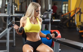 Обои female, gyms, arms, workout, pose, blonde