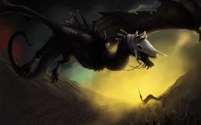 Картинка полет, фантастика, дракон, череп, крылья, арт, цепи
