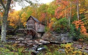 Картинка осень, лес, деревья, ручей, камни, США, Babcock State Park, водяная мельница, кусты