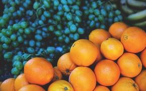 Обои фрукты, виноград, апельсины