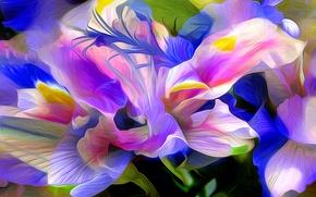 Картинка природа, абстракция, лепестки, цветок, растение