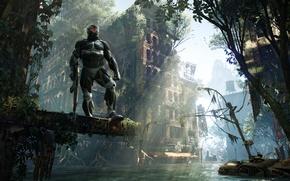 Картинка город, апокалипсис, дома, джунгли, Crytek, Crysis 3, нанокастюм