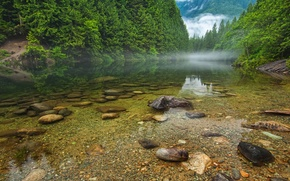 Картинка лес, деревья, горы, туман, озеро, река, камни, Canada, British Columbia, канада
