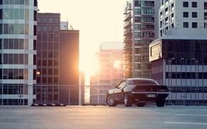 Обои солнце, город, чёрный, Chevrolet, Camaro, шевроле, мускул кар, black, блик, небоскрёбы, мегаполис, muscle car, rear, ...