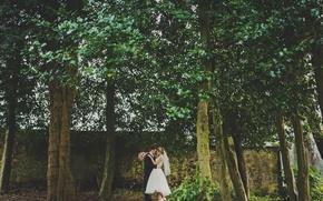 Картинка деревья, Шотландия, невеста, свадьба, жених