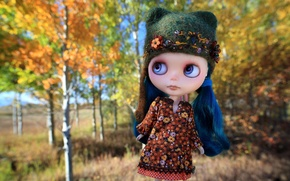Картинка шапка, волосы, игрушка, кукла, платье, шапочка