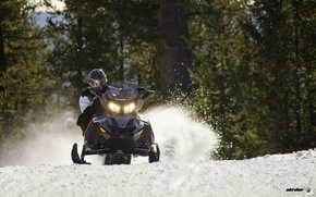 Картинка Деревья, Снег, Лес, Чёрный, Снегоход, Snowmobile, Ski-Doo