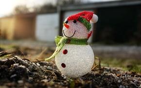 Картинка макро, праздник, Snowman