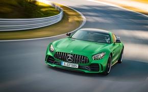 Картинка Mercedes-Benz, Зеленый, Автомобиль, AMG, 2016, GT, R, (C190)