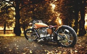 Картинка фон, мотоцикл, Harley