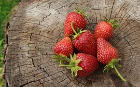 Картинка лето, красный, зеленый, ягоды, дерево, пень, клубника, июнь