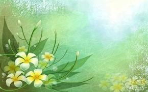 Картинка листья, линии, цветы, краски, вектор, лепестки
