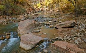 Картинка вода, деревья, река, камни, поток