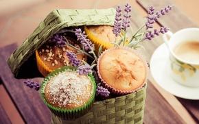 Обои food, десерт, cappuccino, dessert, сладкое, лаванды, капучино, lavender, cup, чашка, кексы, кофе, coffee, еда, пирожное, ...